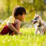 Ten Tips for Taking Care of Your Dog